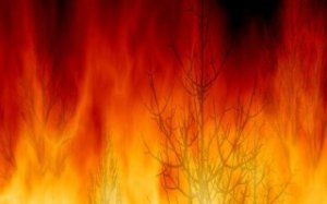 incendio320