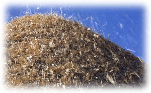 biomasse-agricole